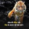 Ajabprem135